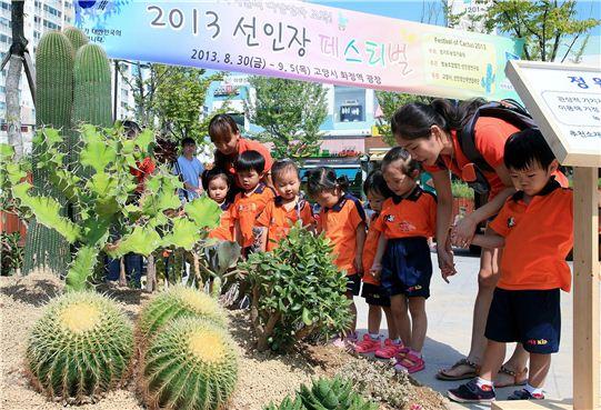 도농기원은 19일부터 선인장 페스티벌을 개최한다. 사진은 지난해 행사모습