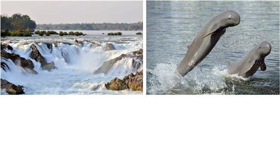 시판돈은 4000여개의 섬으로 이뤄진 곳으로 '콘파팽' 폭포와 민물 돌고래로 유명하다. 최근 외국 관광객이 많이 찾아 세계적인 관광지로 발돋움하고 있다.
