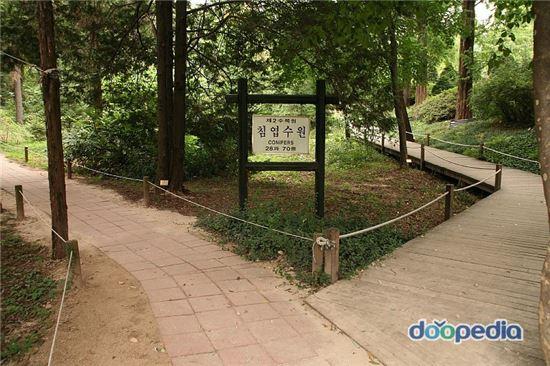 홍릉수목원. 사진출처 -온라인 두산백과사전