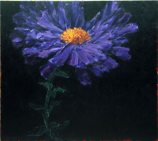 샤흘르벨 <Aster celeste> 264×295cm Oil on canvas 1996