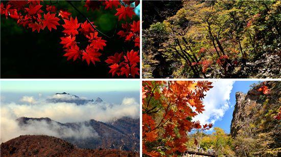 설악산의 다양한 풍경