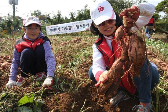 KTDS 관계자들이 19일 가을걷이 농촌 일손돕기에 열중하고 있다.