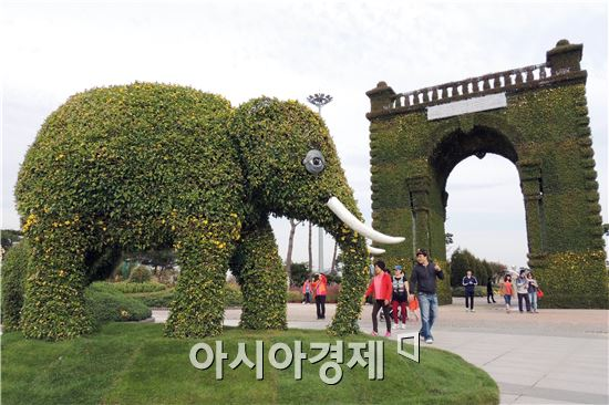 휴일인 19일 관광객들이 함평국향대전이 열릴 함평엑스포공원을 찾아와  대형 코끼리와 독립문 국화꽃을 보면서 가을을 만끽하고 있다.  함평군은  '국화향기 그윽한 풍요로운 함평천지!' 라는 주제로 10월24일부터 11월9일까지 17일간 함평군 함평읍 함평엑스포공원에서 개최한다.