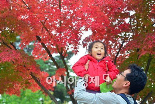 [포토]가을에 빠지다