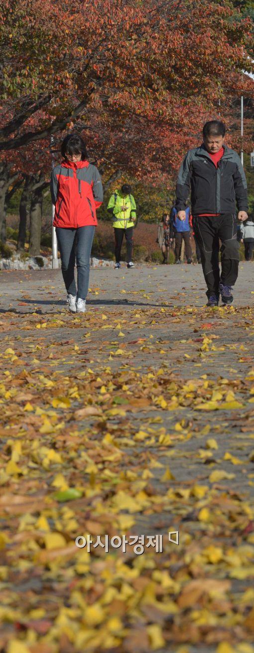 [포토]낙엽길 걷는 시민들