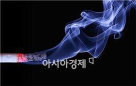 흡연 (자료사진)