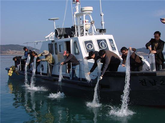 <해양수산과학원 연구원, 어촌계장, 낙지생산자 협회, 어업인 등 30여명이 19일 탄도만 해역에서 어린낙지를 방류하고 있다.>