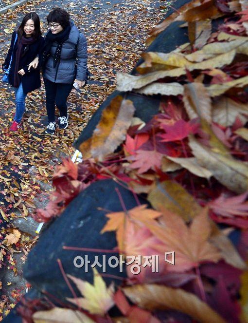 [포토]'마지막 낙엽길 걷기'