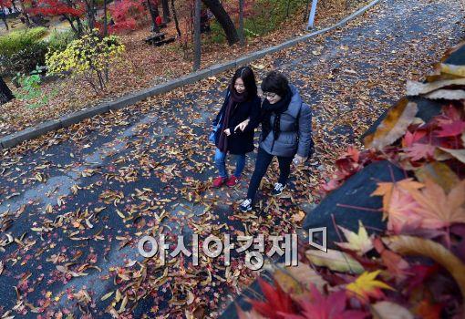 [포토]낙엽길 걸으며....