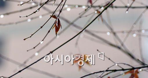 [포토]마지막 가을비