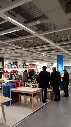 개장 직후 이케아코리아 매장을 둘러보는 고객들.