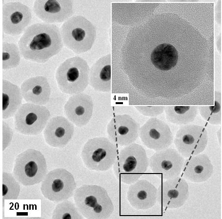 ▲전자현미경으로 금 나노입자(검은색) 표면에 실리카(회색)가 코팅된 모습을 볼 수 있다.[사진제공=미래부]