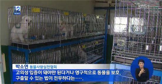 차에 개 매단 채 주행 40대 징역형 [사진=KBS 뉴스 캡쳐]