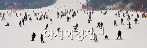 [포토]하얀 설원 위 스키 마법사들