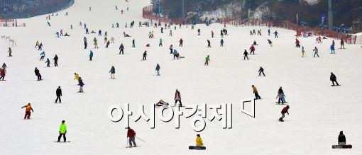 [포토]'설원 위 스키 마법사들'