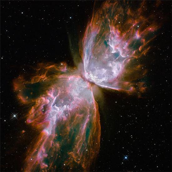 ▲행성상 성운 NGC 6302.[사진제공=NASA]