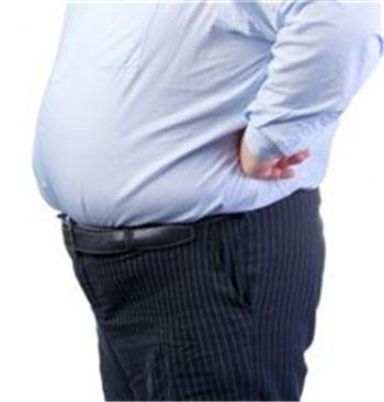 사진=비만, 아시아경제DB