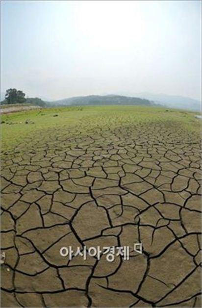 ▲가뭄으로 갈라진 논(사진=아시아경제 DB)