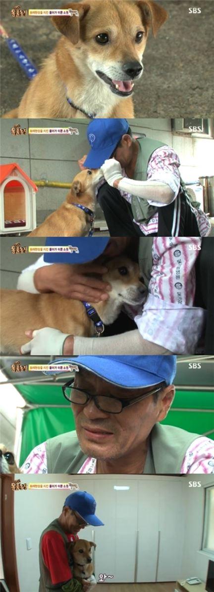 동물농장 똘이. 사진=SBS 방송화면 캡처