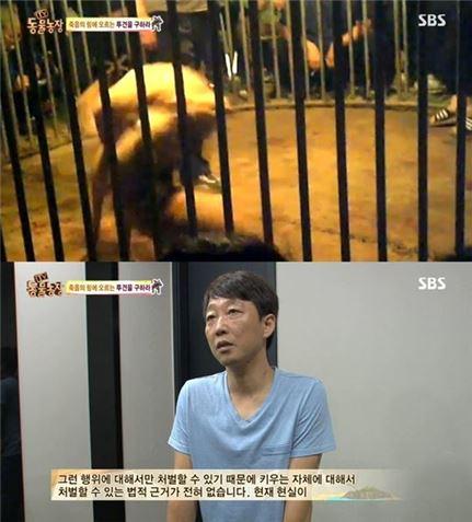 동물농장. 사진=SBS 방송화면 캡처