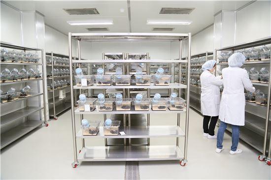 ▲국내 한 제약업체 연구원들이 실험실에서 연구를 진행하고 있다.
