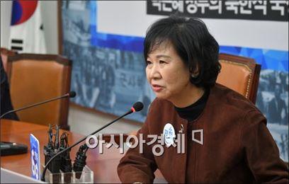 손혜원 더불어민주당 홍보위원장. 사진 = 아시아경제 DB