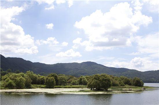 소쇄원을 찾았다면 시간을 더 내어 가까이에 자리한 광주호 생태공원에 들러 천천히 느리게 걸어볼 것.
