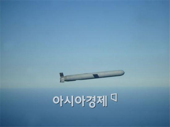 토마호크 블록4 미사일