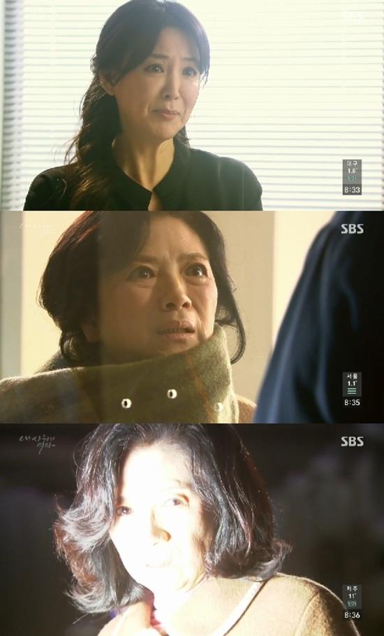 사진=SBS '내 사위의 여자' 캡처