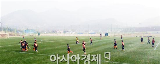 장흥군(군수 김성)은 4일부터 오는 20일까지 정남진리조트 축구장 외 4개 구장에서 '장흥군 체육회장배 축구대회'를 개최한다.