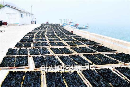 해양수산사업