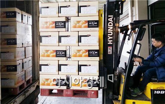 나주시조합공동사업법인에서 베트남으로 수출하는 신고배의 상차작업을 하고 있다.