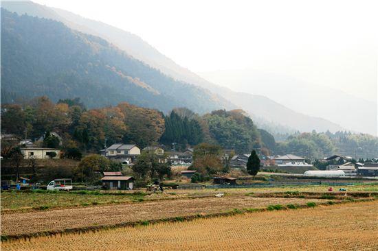 교토 시내에서 버스를 타고 한 시간 남짓 가면 도착하는 산골 마을 오하라. 유서 깊은 여러 사찰이 자리하며 산골에서 자란 청정 식재료로 만든 슬로 푸드를 맛볼 수 있다.