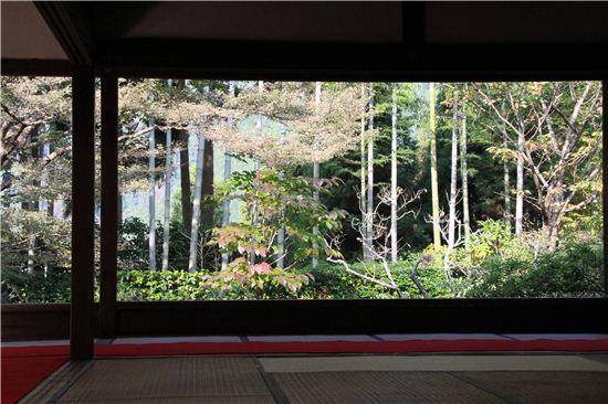 호센인은 사찰 주지의 숙소로 대나무 정원과 천연기념물인 소나무가 명물이다.