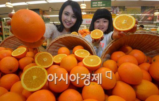 [포토]이제부터 오렌지가 제철!