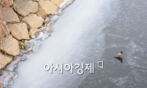 [포토]'아주 꽁꽁 얼었구만'