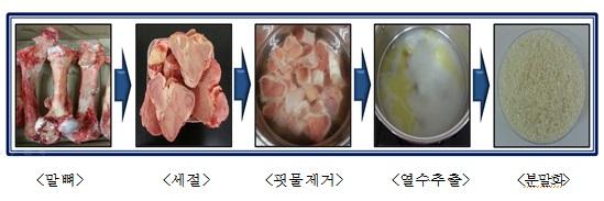 말뼈 펩타이드 처리 과정(사진:농촌진흥청)