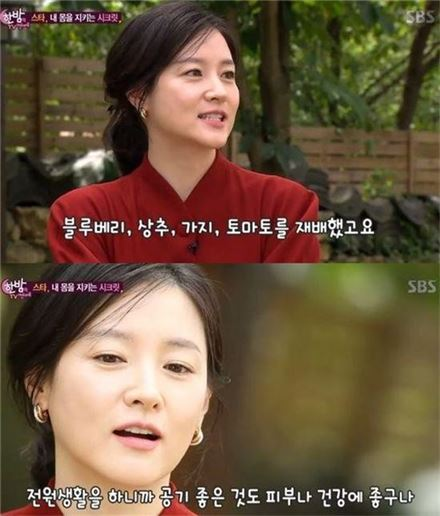 한밤 이영애 /사진=SBS '한밤의 TV연예' 캡처