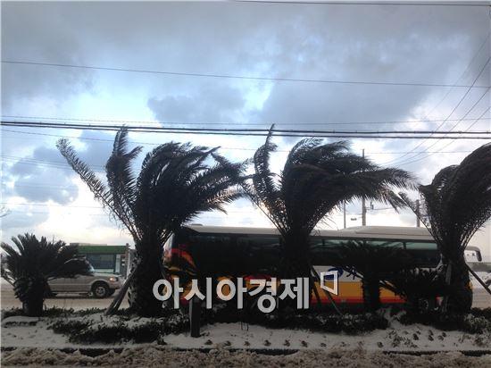 24일 제주의 하늘은 이따금 햇볕이 내리며 맑게 갠 모습을 하는 등 변덕스러운 모습이었다.