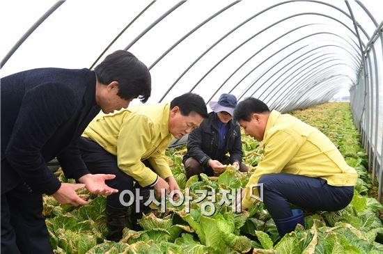 박우정 고창군수가 폭설피해로 어려움을 겪고 있는 농업인들을 만나 격려했다.