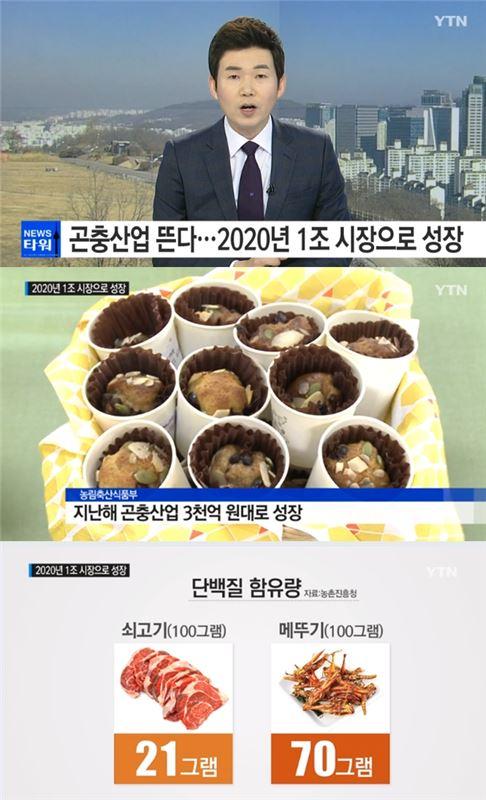 사진 = YTN 방송화면 캡처
