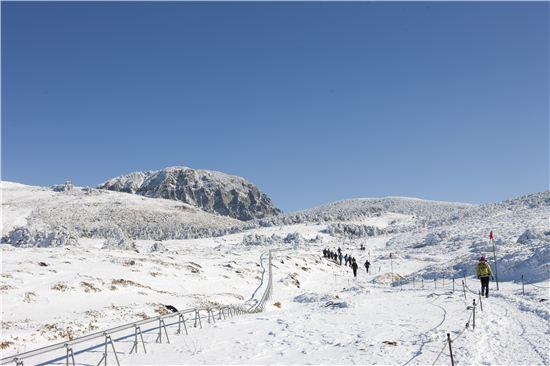 한라산에는 여러 개의 탐방로가 있는데, 겨울에는 영실탐방로로 사람들이 몰린다.