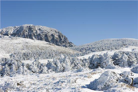 겨울 한라산을 찾는 관광객들이 꾸준히 늘고 있다고 한다. 그러나 한라산은 기상 악화로 입산이 종종 통제되기도 하니 찾기 전에 입산 가능 여부를 확인해 둘 필요가 있다.
