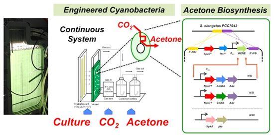 ▲이산화탄소에서 아세톤을 만드는 기술이 개발됐다.[사진제공=KIST]
