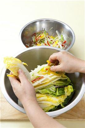 5. 절인 배추에 소를 사이사이에 넣어 겉잎으로 잘 싸서 보관용기에 차곡차곡 담는다.