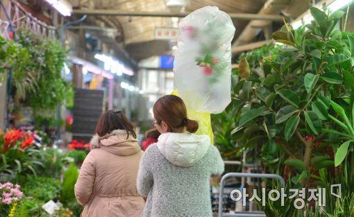 [얇아진 지갑 우울한 연말]성탄 특수도 없다, 배송차 멈춰선 양재동 꽃시장