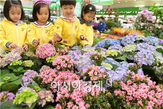 농협유통, 새봄맞이 봄꽃축제 최대 30% 할인