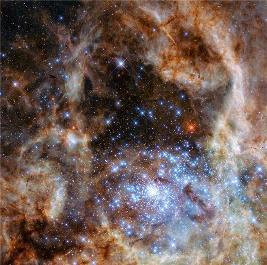 허블우주망원경이 타란툴라 성운의 중심지역을 촬영했다. 젊고 밀집도가 높은 별들이 있는 'R136' 성운(오른쪽 아래 부분)에서 지금까지 관측된 별 등 중 가장 무거운 별들을 확인했다.[사진제공=NASA]