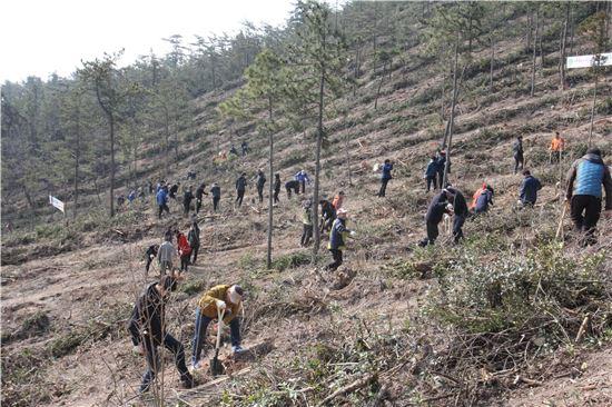 전남 신안군은 25일 제71회 식목일 나무심기 행사를 개최했다.