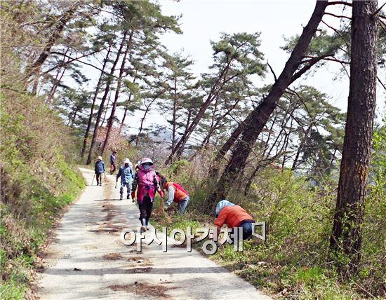 장흥군 유치면(면장 김한석)은 장흥댐 둘레길 주변에 개복숭아 나무 1,800그루를 심었다.